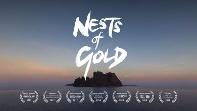 Photo of Nests of Gold – a short documentary