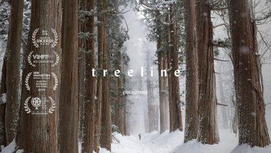 Photo of Treeline (Documentary)